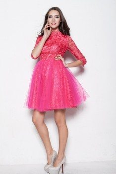 Hot Pink High-end Lace Half Sleeve Tulle Prom Dress