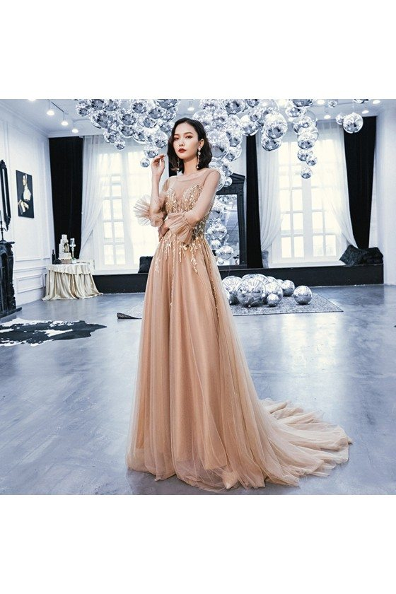 Brown Train Length Long Tulle Prom Dress With Sheer Neckline Long Sleeves